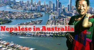 Nepalese Australian Nepalese in Australia, where Nepalese living in Australia - NepaliPage