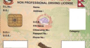 What is the procedure for applying for a Nepalese driving license online - NepaliPage